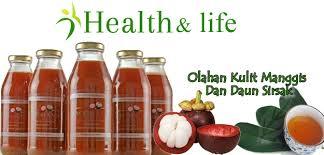 Obat Penurun Kolesterol Jahat Tradisional